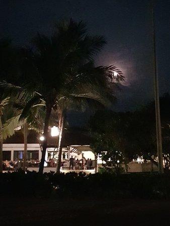 1 night of honeymoon heaven
