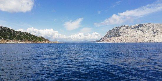 Puntaldia, Италия: Discovery Diving Sardegna