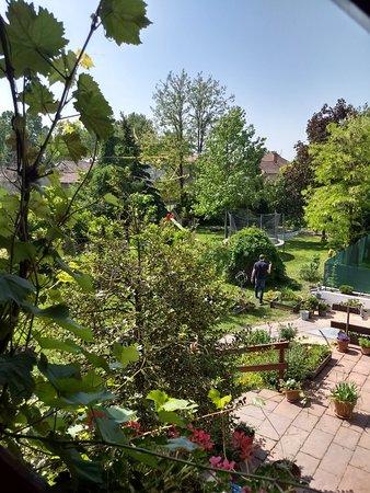 Lajosmizse, Hungría: IMG_20180506_105402110_HDR_large.jpg