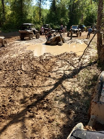 Busco Beach & ATV Park: There are some deep holes back there!!!