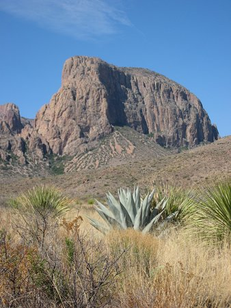 Alpine, Teksas: Desert vegetation and a butte