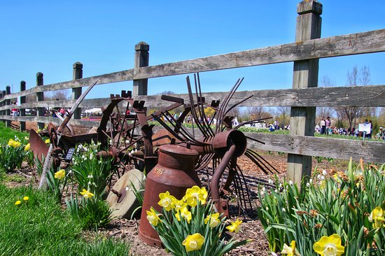 Windmill Island Gardens: Nice fence