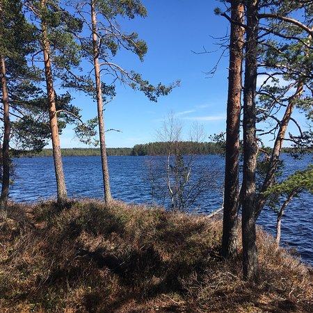 Poytya, Finland: photo1.jpg