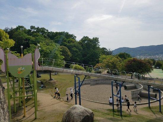 Akaiwa, Япония: 20180505_152557_large.jpg