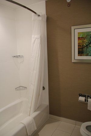 Fairburn, GA: I love cloth shower curtains