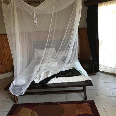 Madidi Lodge: photo2.jpg