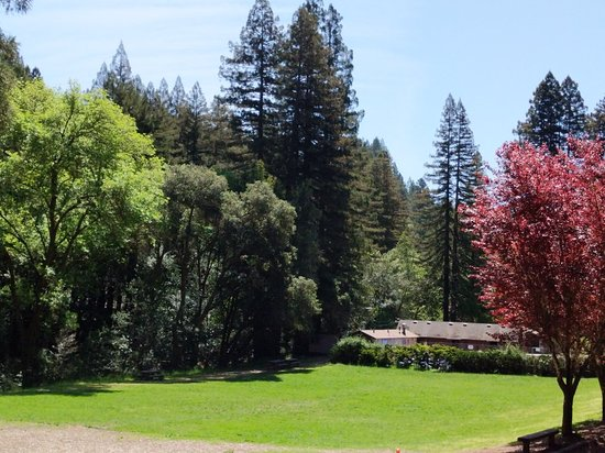 Occidental, Kalifornien: Westminster Woods Camp and Conference Center
