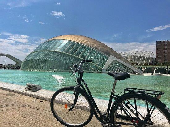 Basset Bike