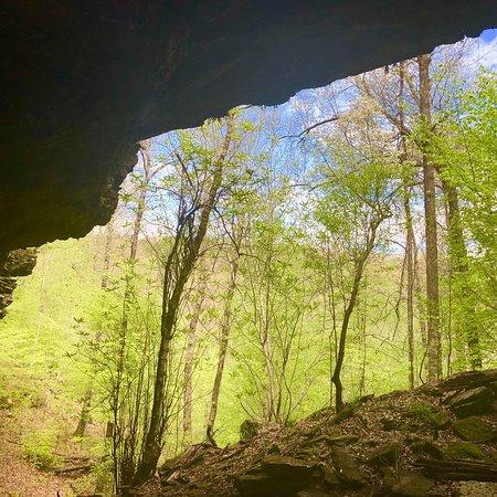 Arkansas: photo3.jpg