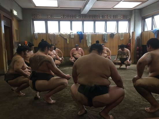 Sumo Experience Lesson for Foreigners / Tourists