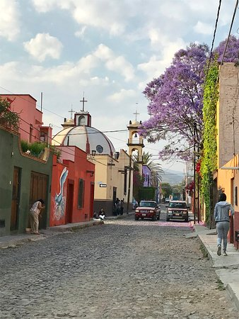 Hostel inn Mexico: Area around Hostel Inn