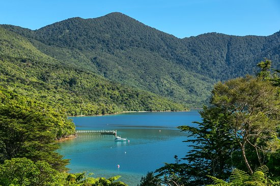 Endeavour Inlet, New Zealand: A view of the bay where Mahana Lodge is located.