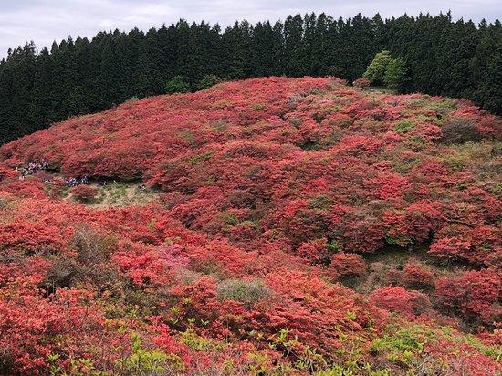Mt. Katsuragi Ropeway