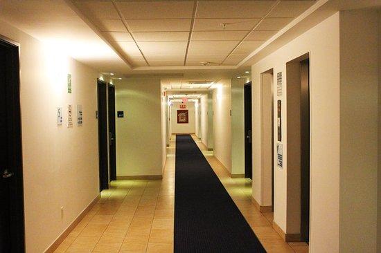 Holiday Inn Express Mérida: Lobby