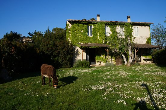 Tocco da Casauria, Italy: We occupied the two small units on the first floor of the building shown.