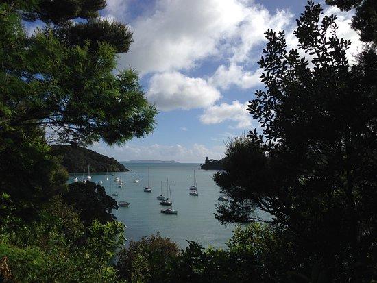 Mangonui, Nueva Zelanda: View from hill track
