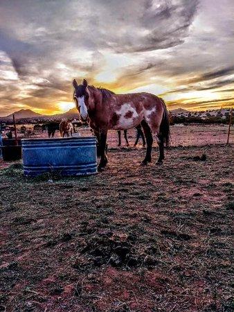 Ribera, NM: Beautiful Sunsets!