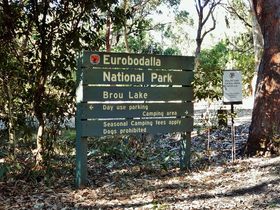 Eurobodalla National Park - Brou Lake Camp Ground