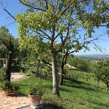 Sarmede, อิตาลี: photo1.jpg