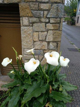 Carrena, إسبانيا: IMG_20180430_184047_684_large.jpg