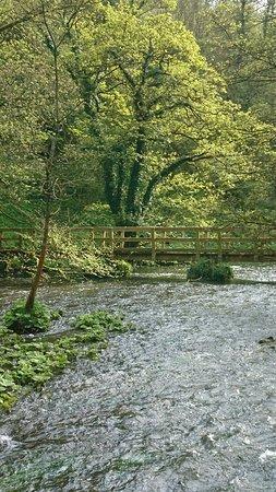 Millers Dale, UK: DSC_0247_large.jpg