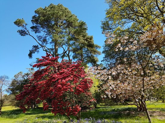 Knightshayes court: Knightshayes, May Day bank holiday 2018