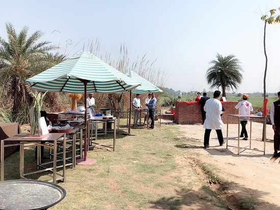 Sohna, India: Holi Celebration near Lake