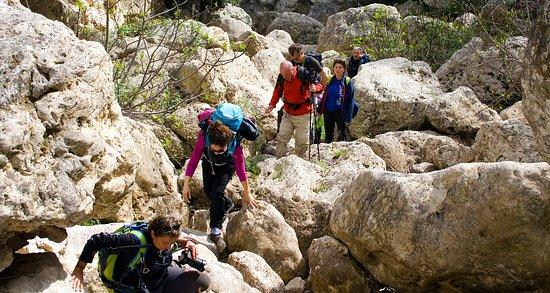 Gravina di Laterza - Terra delle Gravine, canyon in Puglia