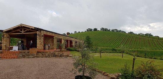 Tenuta Casteani farmhouse, wine & events in Tuscany Maremma: 20180505_181635_large.jpg
