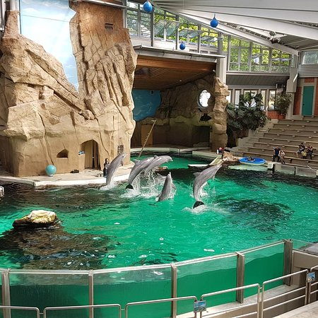 Zoo Duisburg 2018 All You Need to Know Before You Go with Photos