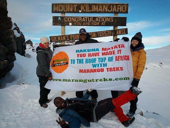 Marangu Treks & Safaris