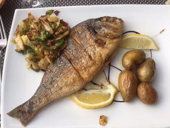 Merzig, Alemania: Fish of the day