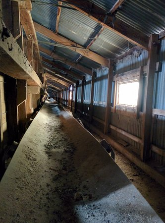 Murtoa, Australia: Old grain conveyor belt