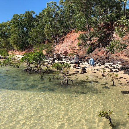 Melville Island, ออสเตรเลีย: photo6.jpg