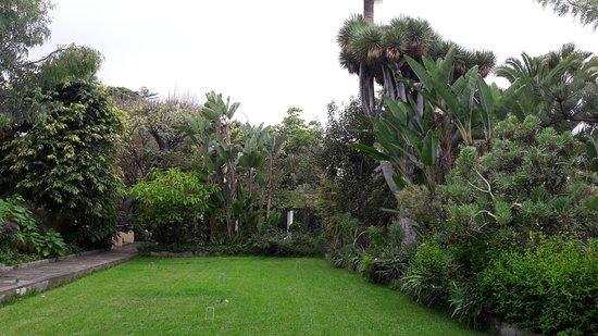 Jardín de Orquídeas de Sitio Litre: parc