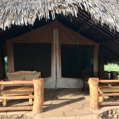 Kibo Safari Camp: photo1.jpg