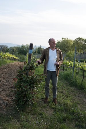 Sassofortino, Italie : Here, Martin talks about the vineyards - his enthusiasm is infectious.