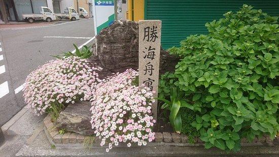 Katsukaishugukyochihi