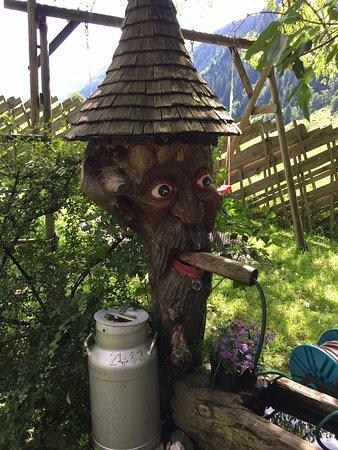 Hollersbach im Pinzgau, النمسا: Alm Life