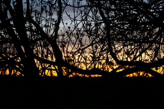Dobre Miasto, Pologne: zachód słońca widoczny w pokoju