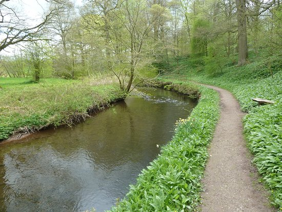 Temple Sowerby, UK: River walk