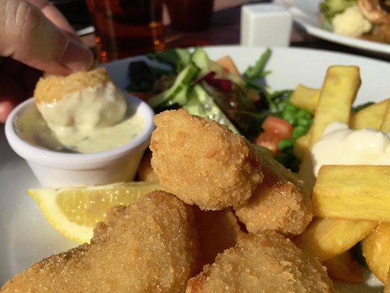 The Morning  Star: Scampy and Chips at the Morning Star Pub ..