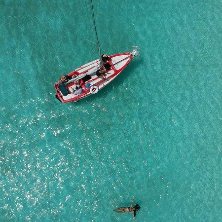 The Sailing Colibri