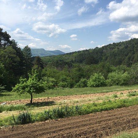 Saint-Julien-des-Points, فرنسا: Vue de la terrasse