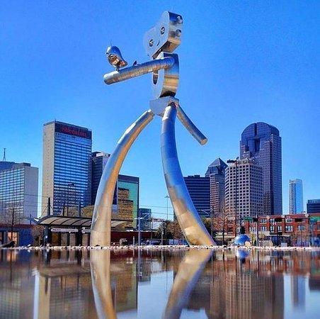 Discover Dallas Tours照片