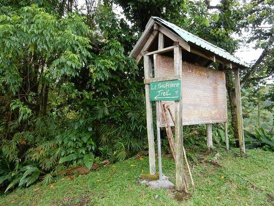 La Soufriere Cross Country Trail: Trailhead
