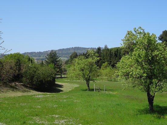Parco Mralfiore