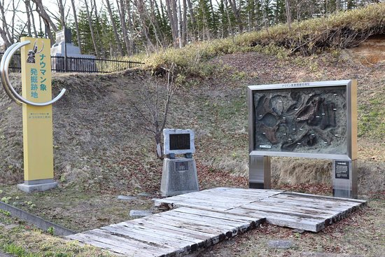 Foto de Nauman Statue Excavation Spot