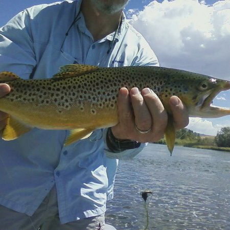 High Plains Fly Fishing