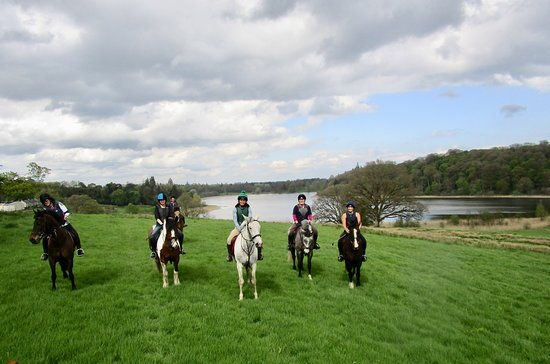 Glaslough, Ireland: Enjoyed riding on this beautiful estate .